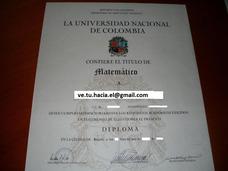 Asesoría Titulo Universidad