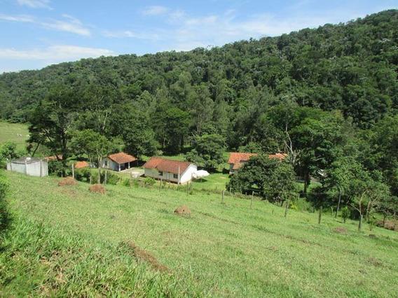 Sitio Com 6 Alqueires Estrada Santo Agostinho De Baixo - Si-973