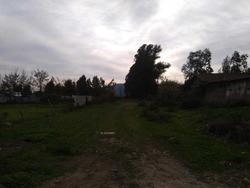 Tinguiririca, Chimbarongo, Chile, Las Quezadas #21 S / N
