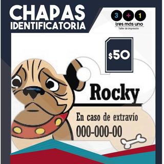 Chapas Inentificatorias Mascotas Perro Gato