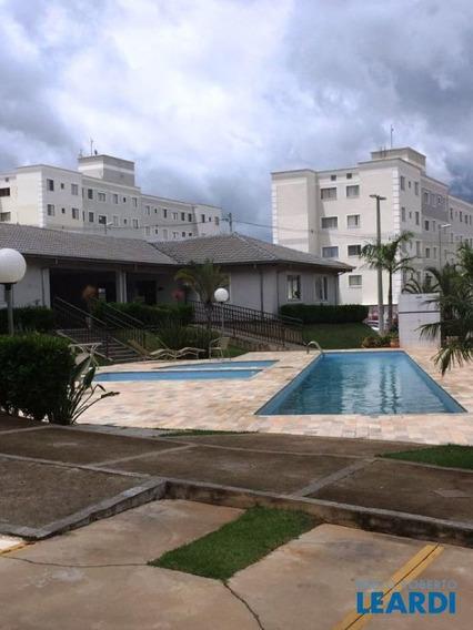 Apartamento - Jardim Anton Von Zuben - Sp - 498244