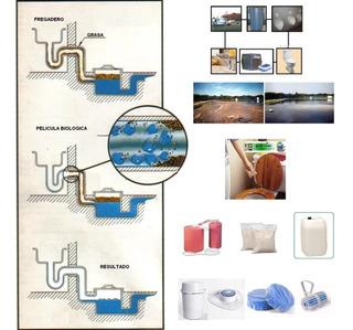 Digestor Organico(bacteria-enzima) Tratamiento Agua Residual