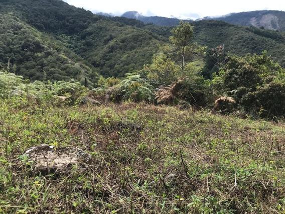 Terreno En La Mucuy Alta, Merida