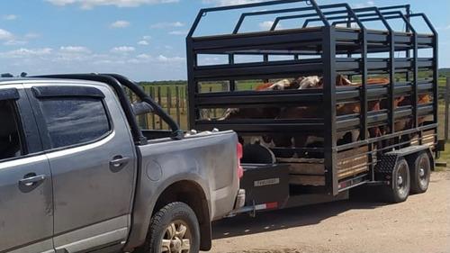 Trailer Ganadero Para Ganado Caballos Desmontable Tractor