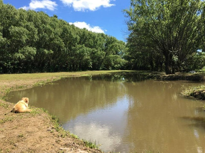 Lote En Venta En Arroyo Gambado - Delta De Tigre