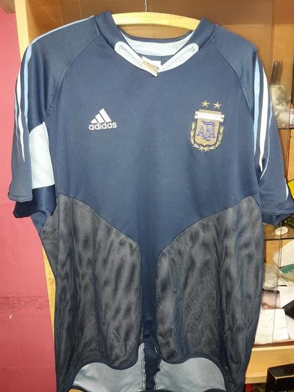 Argentina ,camiseta Alternativa Talle L