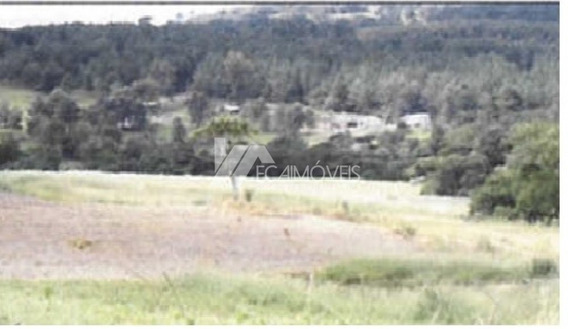 Estrada Tamarana Briolandia Km 14 Fazenda Água Branca, Serrinha, Tamarana - 426151
