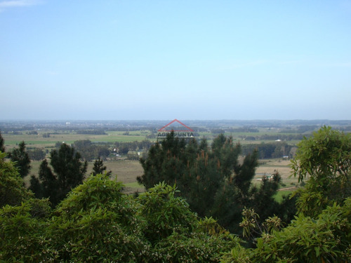 Chacra Zona La Pataia- Ref: 4529