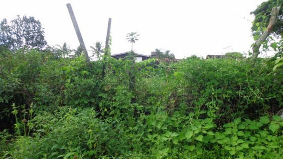 Terreno Ficando À 300 Metros Do Mar - Itanhaém 2599   P.c.x