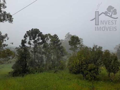 Cod - 5640 -  Sitio  Em Ibiúna  Com 48.000m²  Com Ótima Topo - 5640