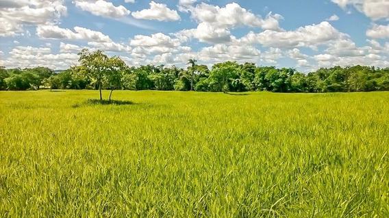 Fazenda 36 Alqueires Formosa Brasília Df Cód. Fdf-1