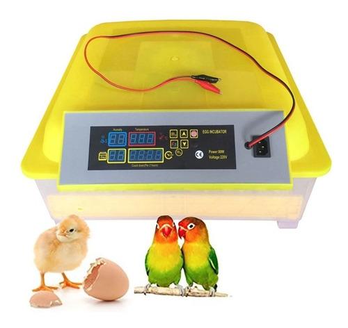 Incubadora De 48 Huevos Hhd 12v(bateria)  Y 220v