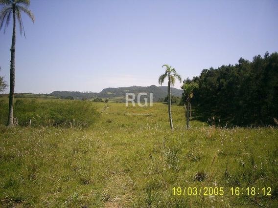 Sítio Em Neópolis - El50877707