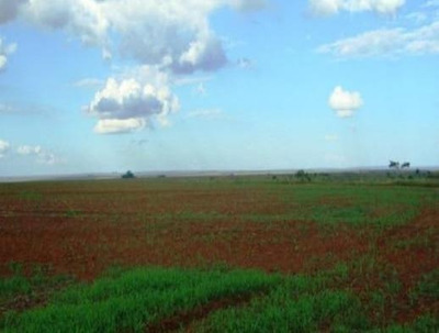 Fazenda Para Venda Em Tangará Da Serra, Área Zona Rural Tangara Da Serra/mt R$ 430.000.000 - 32150