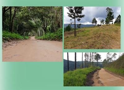 Terrenos De 500m2 - Condomínio Em Mairiporã A 36km De Sp