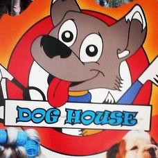 Dog House Peluquería Canina Y Felina