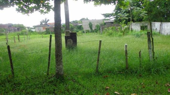 Terreno No Jd.das Palmeiras Lado Praia - Itanhaém 2601 | Npc