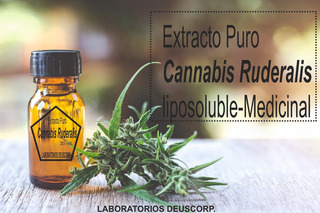 Extracto Cannabis Ruderalis Liposoluble - L a $2667
