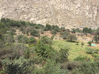 Remato Exclusivo Y Hermoso Terreno En Santa Eulalia