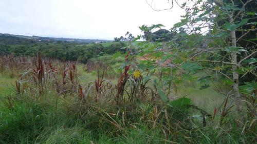 Imagem 1 de 10 de Terreno Bairro Do Regi 17000m2
