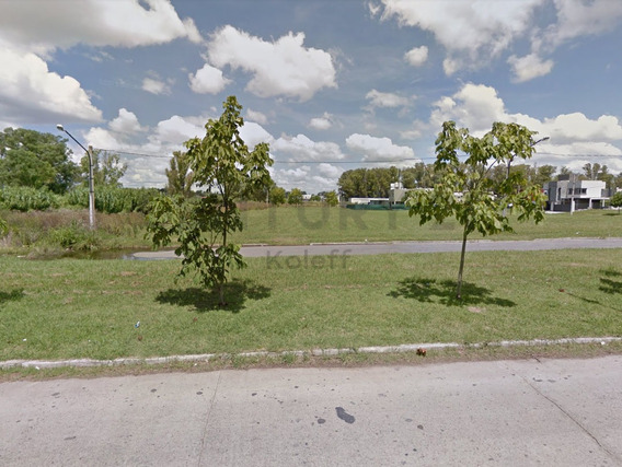 501 Entre 132 Y 133, Lote En Venta, Barrio Don Carlos.-