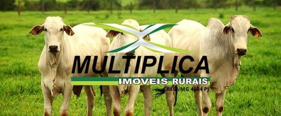 Fazenda A Venda Em Tupaciguara Mg 58,08 Hectares . - 313