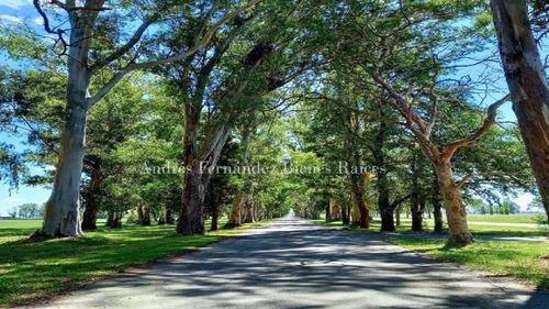 Imagen 1 de 8 de Lote 293 La Reserva Escondida, Área 60