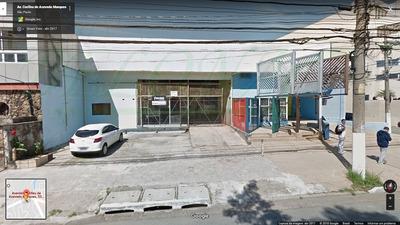 Comercial Para Venda, 0 Dormitórios, Butantã - São Paulo - 1848