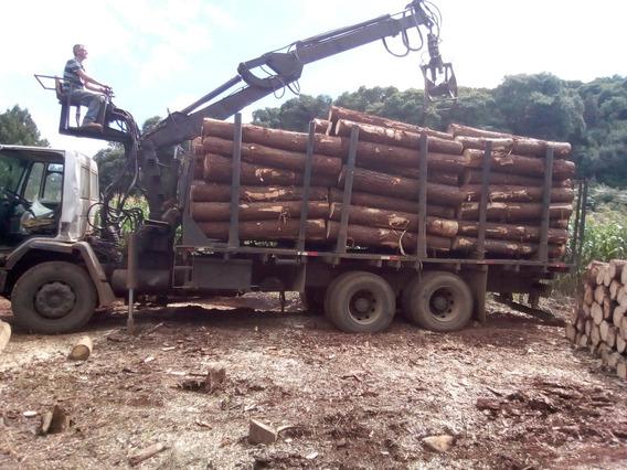 Cargo 5032 C/ Grua Florestal Transtora, Pego Troca Até 70mil