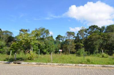 Terreno À Venda, 395 M² Por R$ 230.000 - Jardim Mariana - Canela/rs - Te0508
