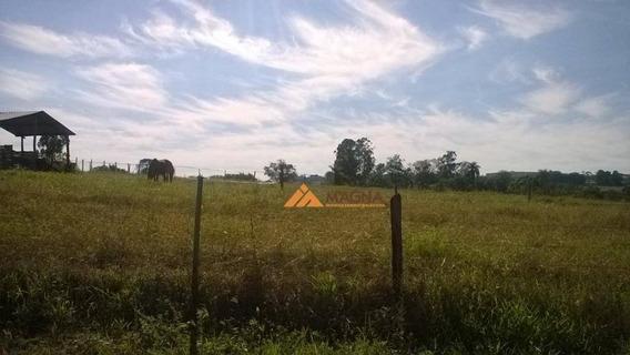 Terreno Rural À Venda, Cajuru, Cajuru. - Te0770