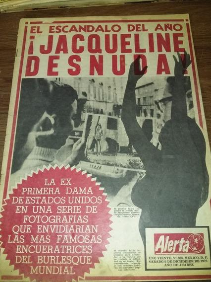 Aguja Onassis En Mercado Libre México