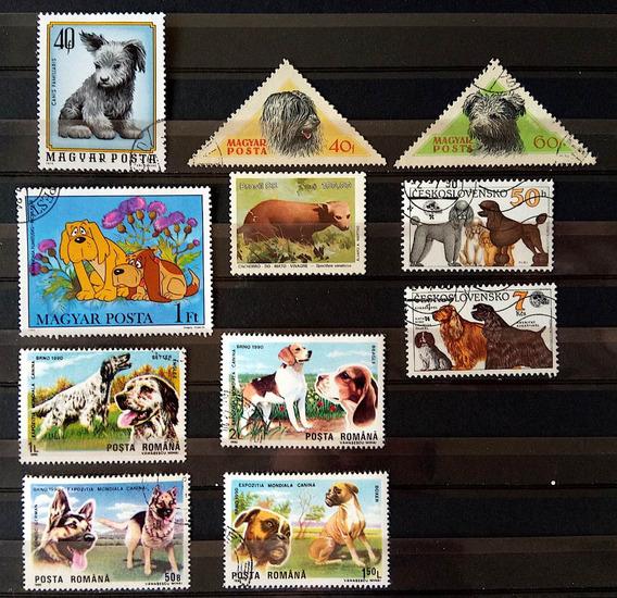 Fa 002 Selo Fauna Macaco Brasil Hungria Romenia