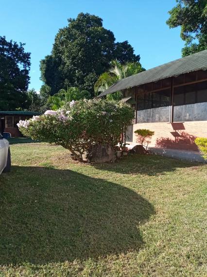 Maison Vende Casa En El Castaño Tlf 04243162405