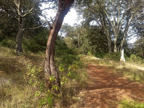 Imagen 1 de 4 de Terreno Ideal Para Casa De Campo
