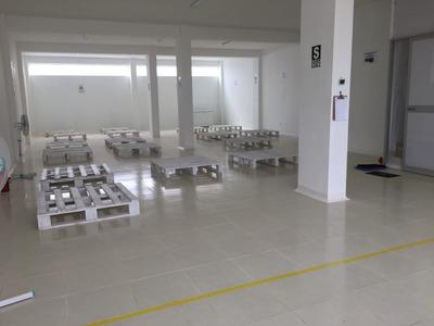Alquiler De Almacén Industrial Para Alimentos En Andahuaylas