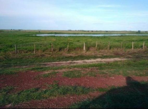 Lyl 2000 Vende Terreno En Apure (a)