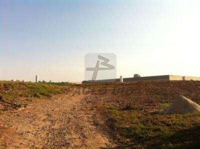 Imagem 1 de 1 de Terreno Industrial - Parque Capuava - Ref: 959 - L-959