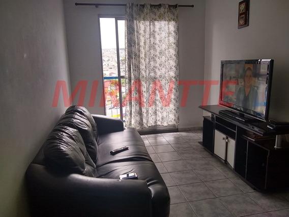 Apartamento Em Cachoeirinha - São Paulo, Sp - 330234