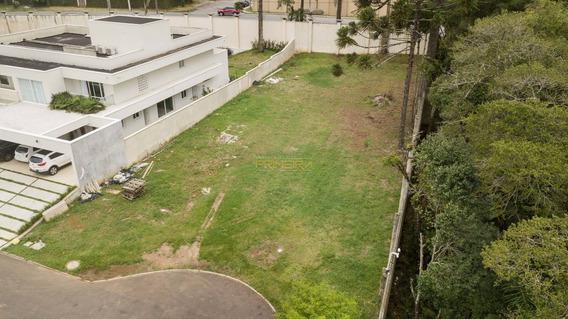 Terreno Padrão Em Curitiba - Pr - Te0008_impr