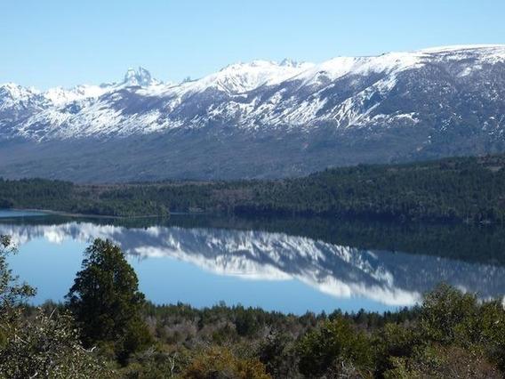 Campo 145 Has. Lago Lezana.