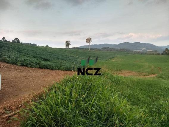Fazenda À Venda, 400000 M² Por R$ 10.000.000,00 - Centro - Parai/rs - Fa0094