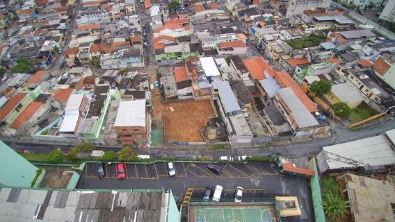 Terreno Padrão Em São Paulo - Sp - Te0048_prst