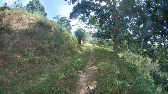 Finca En Venta Los Cerritos, Montalban 21-10777mcl