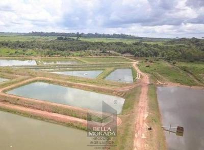 Fazenda À Venda Com 2.771 Ha Em Rio Crespo, Ro - Fz-018-1