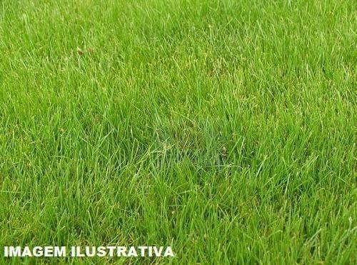Imagem 1 de 1 de Terreno Em Mairinque/mato Dentro - Sem Burocracia