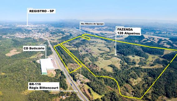 Fazenda C/1400 Metros De Frente P/ Regis Bittencourt Km 442