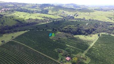 Fazenda 350 Ha Região Bambuí (mg) - Cod: Mta743