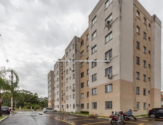 Apartamento - Mato Grande - Ref: 50736 - V-50736