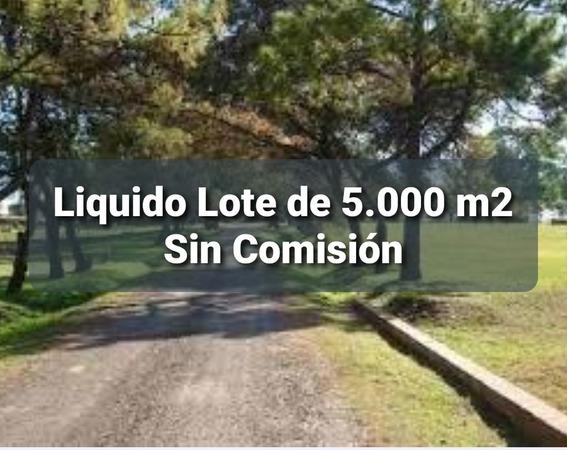 Vendo Lote A 17.500 Dol De 5.000m2